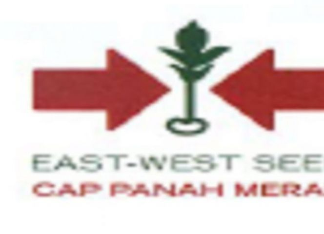 Lowongan PT.East West Seed Indonesia